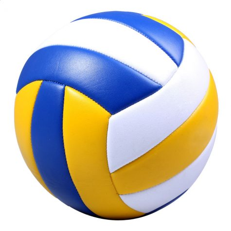 BT Boy's Volleyball Team Preseason Outlook