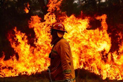 Empty Promises Cannot Extinguish Fires